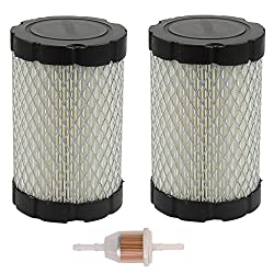 Butom Pack of 2 796031 Air Filter for Briggs &