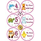 """25 Pack of 4"""" Baby Monthly Stickers with Milestone & Holiday - Best Birthday Shower Gift for Girls - Watch First Year Growth Each Month - Premium Belly Onesie Stickers from All Pro Baby (Pink)"""