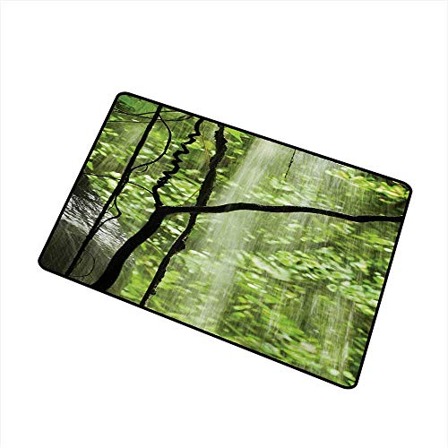 (BeckyWCarr Rainforest Welcome Door mat Jungle View with Waterfall Rocks and Trees Natural Beauty in Wild Atmosphere Door mat is odorless and Durable W29.5 x L39.4 Inch,Green)