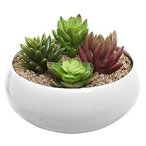 6'redondo cuenco blanco cerámica carnosas maceta orificio de drenaje. En la parte inferior. Moderno minimalista maceta/macetas para flores, Cactus, pequeñas plantas o flores. Para uso interior o exterior. Porcelana Brillante Acabado.