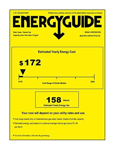 Buy rinnai tankless water heater natural gas rur98in