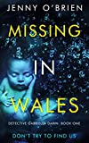 Missing in Wales: A gripping Welsh detective thriller with a wicked twist (Detective Gabriella Darin Book 1)