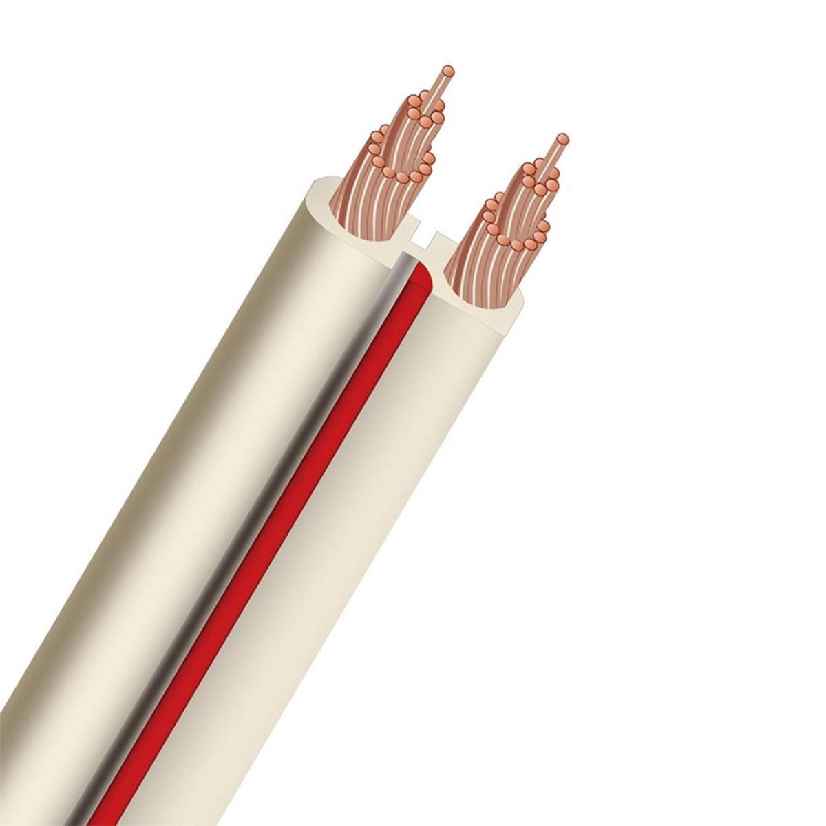Amazon.com: AudioQuest X-2 Flat Series 14 Gauge Speaker Cable 100 ft ...