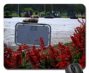 Park in Lahore Mouse Pad, Mousepad