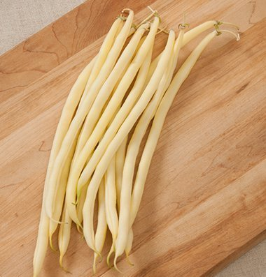 David's Garden Seeds Bean Pole Monte Gusto DGS3169 (Yellow) 50 Open Pollinated Seeds