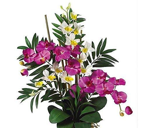 SKB Family Double Phal/Dendrobium Silk Flower Arrangement Classic Orchid Exquisite Ceramic ()