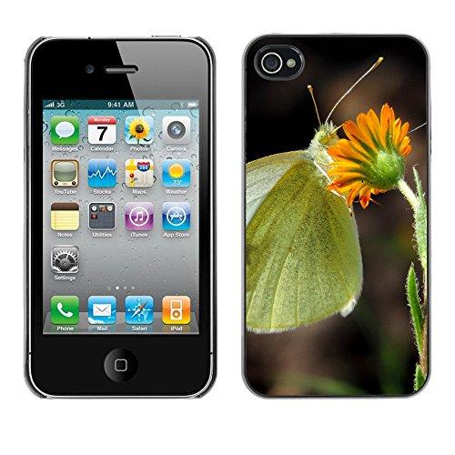 Premio Sottile Slim Cassa Custodia Case Cover Shell // F00012926 papillon // Apple iPhone 4 4S 4G