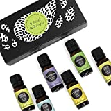 Top 3 Blends & Top 3 Single Oils Set/ Kit- 6/10 ml 100% Pure Therapeutic Grade Basic Aromatherapy Sampler Essential Oil Gift Set
