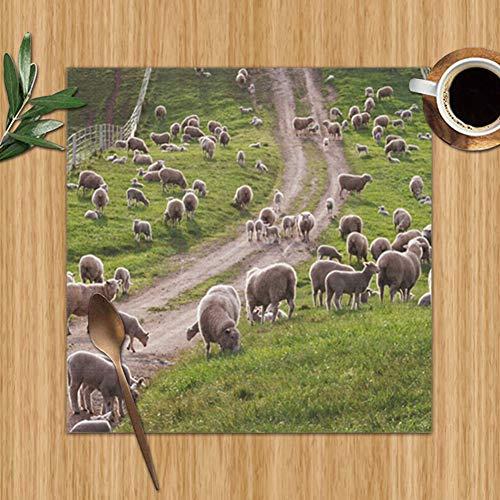 Australian Sheep Lambs Back Lit On Wildlife Farm Parks Outdoor Set Of 4 Placemats For Dining Table,Premium Reusable Place Mates,Plastic Placemats,Wipe Clean Placemats,Comic Place Mat,Dining Placemats( (Australia Patio Ideas Back)