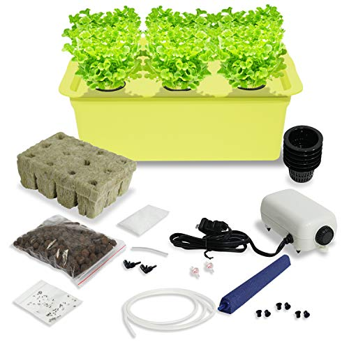 (Lettuce Garden Starter Kit Indoor - Grow Kit with Nutrients and Organic Heirloom Bibb, Buttercrunch, Oakleaf Green, Romaine, Prizehead - Complete All in One Ready to Grow (Lettuce Kit) )