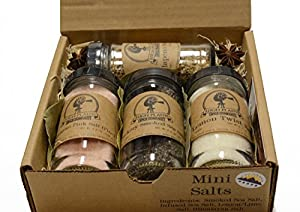 Mini Salts Gift Set of 4 ~ Gift Set by High Plains Spice Company ~ Gourmet Meat and Veggie Spice Blends & Rubs For Beef, Chicken, Veggies & All Cooking Recipes ~ Spice Blends Handcrafted In Colorado