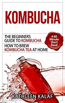 Kombucha Beginners Kombucha How Home Fermented ebook
