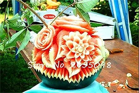 10x Mini Wassermelone Samen Hof Decor Blume Bonsai Samen Gartenpflanze