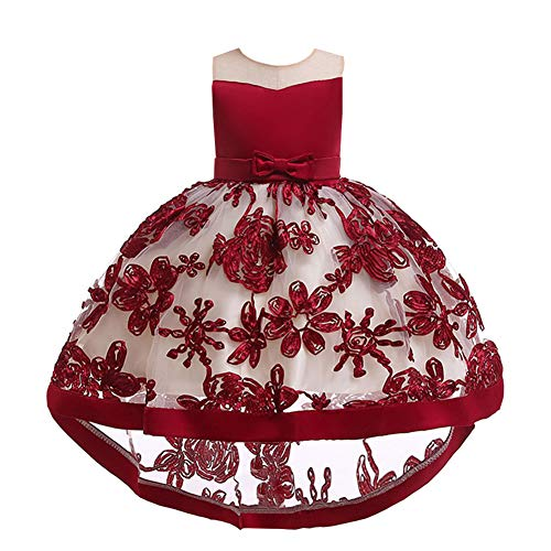 CH&Q Girls Embroidery Ball Gown Sleeveless Flower Girl Dress Kids Pageant Party Wedding Dresses Bordeaux ()