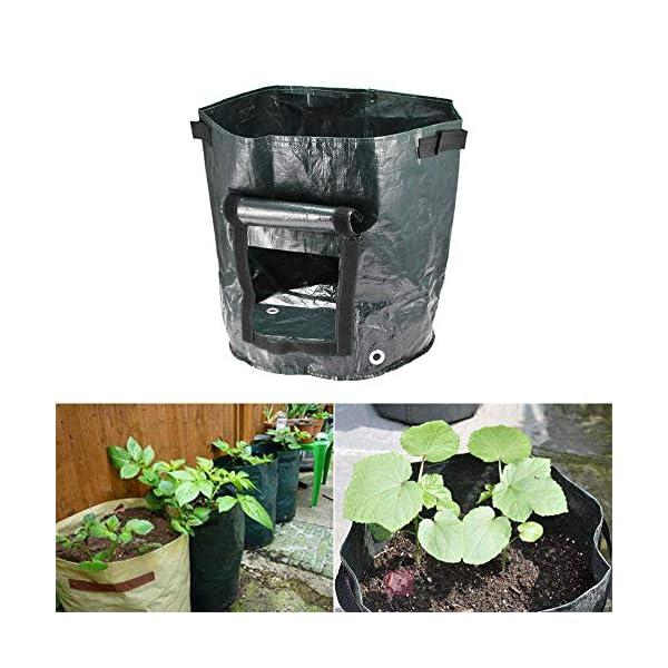 shilihuajian Fai da Te Patate Coltivare Fioriera PE Panno Piantare Contenitore Contenitore Orto Giardinaggio Jardineria… 3 spesavip
