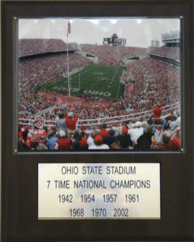 NCAA Football Ohio Stadium Stadium Player Plaque