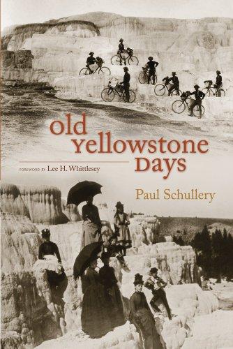 Old Yellowstone - Remington Park