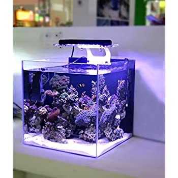 Amazon Com Led Light Coral Grow Marine Reef Tank White