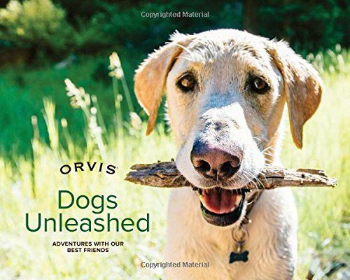 Dogs Unleashed: Adventures with Our Best Friends ()