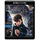 Fantastic Beasts and Where to Find Them (4K Ultra HD + Blu-ray )