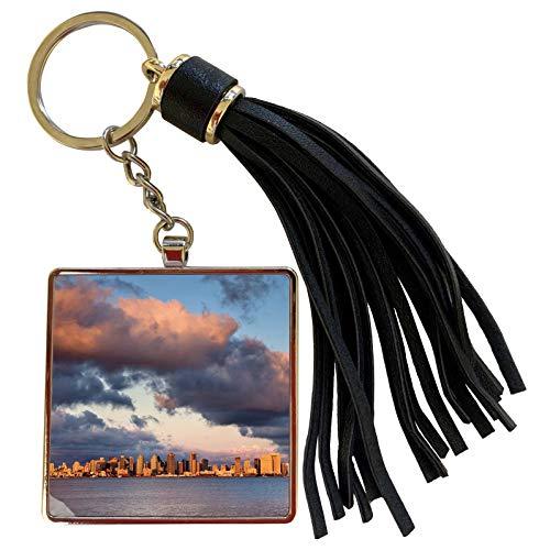 3dRose Danita Delimont - San Diego - California, San Diego, City skyline across San Diego Bay - Tassel Key Chain (tkc_250630_1) (Real World San Diego 2004 Full Episodes)