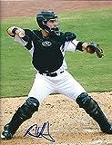 Autographed Austin Hedges San Diego Padres 8x10 Photo