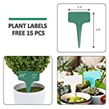 GROWNEER 15-Pack Clear Plant Saucer Drip