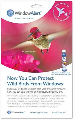 - WindowAlert Hummingbird Decals