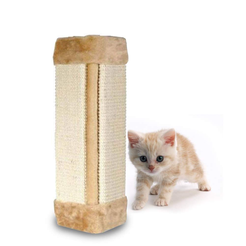 Amazon.com: Cyclamen9 - Rasqueta de pared para gatos, de ...