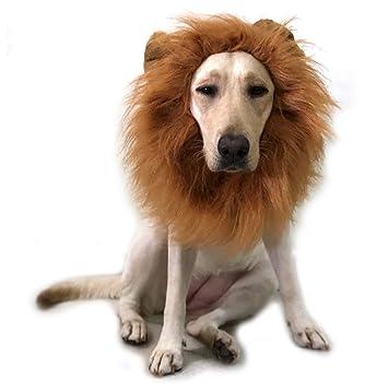 TFENG Disfraz de Perro Mascota Lion Mane Peluca con Oreja Fiesta de Halloween Festival de Disfraces
