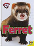 Ferret (Caring for My Pet)