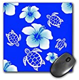 Best 3dRose Turtle Beach Mouse Pads - 3dRose Macdonald Creative Studios – Hawaii - Blue Review