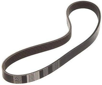 Genuine Nissan 11720-EL00A Fan and Alternator Belt
