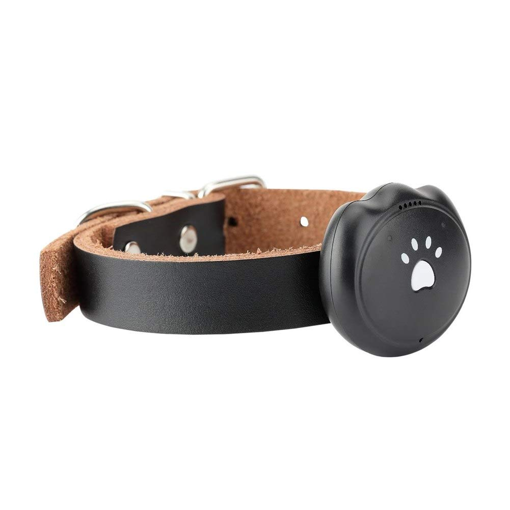 GPS Trackers - 3g Dog Gps Tracking Pet Finder Collar Safety Location Attachment 2019ing - Wallets Chips Cars Satelitar Keys Equipment Vehicles Trackers Cats Trucks Motorcycles Dogs Pets Kids
