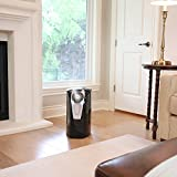 Vornado Ultra1 Whole Room Ultrasonic Humidifier