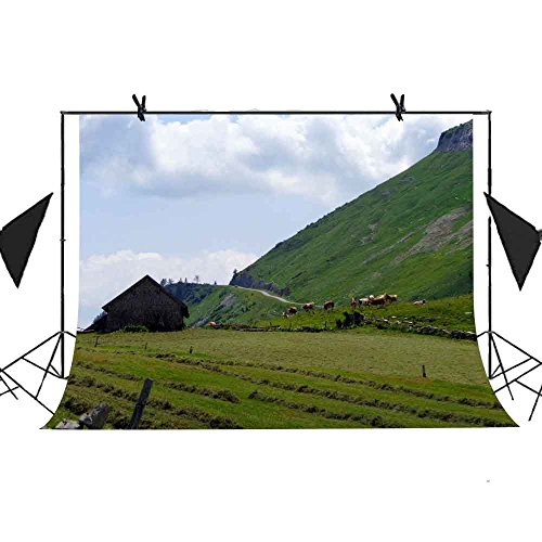 MEETS 7x5ft Manor Photography Backdrop House Mountain Grass Cow Picture Studio Props Commercial Use Photo Booth Themed Party Background MT205 (China Manor House)