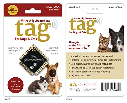 Microchip Awareness Pet ID Tags for Dogs and Cats (Small) Gold Plated (Awareness Dog Tag)