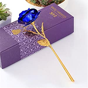 BELUPAI 24K Gold Foil Rose, Artificial Forever Rose Plastic Long Stem with Stand Beautiful Appearance Ideal for Valentine's Day Mother's Day or Other Memorable Festivals Unique Festive Gift 10