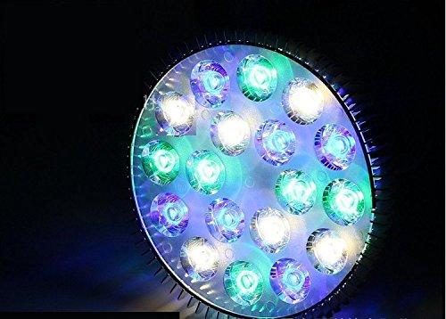 Dlpj e led acquario lampada led super barriera corallina e luce