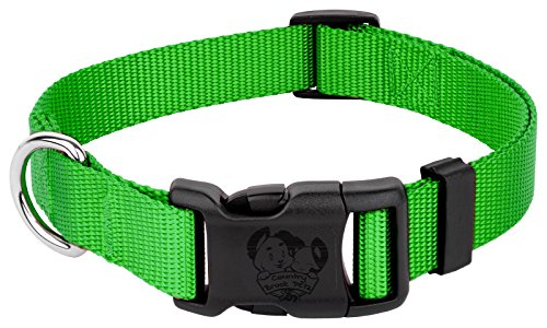 Image of Country Brook Petz | Vibrant 21 Color Selection | Deluxe Nylon Dog Collar (Hot Lime Green, Medium, 3/4 Inch Wide)