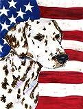 Cheap Caroline's Treasures SS4225GF USA American Flag with Dalmatian Flag, Small, Multicolor