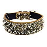 Puppy Collar,Neartime Rivet Adjustable Pet Collars Dog Necklace Cool (M, Gold)