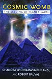 img - for Cosmic Womb: The Seeding of Planet Earth book / textbook / text book