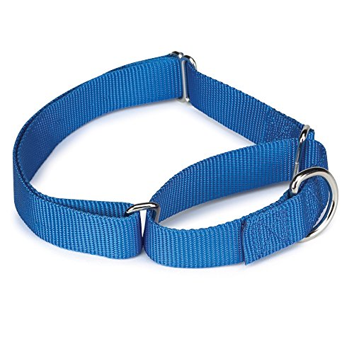 Guardian Gear Nylon Martingale Dog Collar, Fits Necks 14