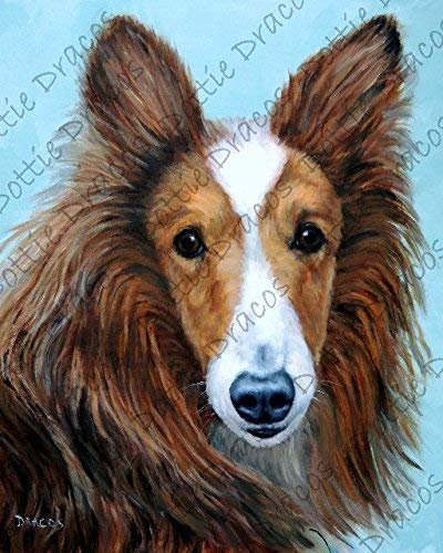 (Collie Art, Dog Art, Rough-coated collie, herding dogs, sheep dogs, Dog Art, Print of Original Painting by Dottie Dracos)