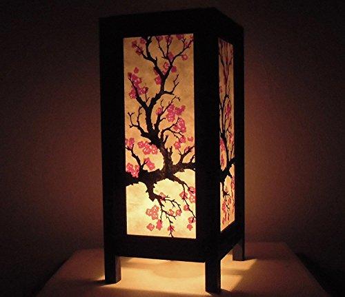 Oriental Garden Lighting
