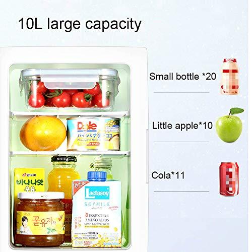 Mini Refrigerador De 10 litros para Autos Refrigerador ...