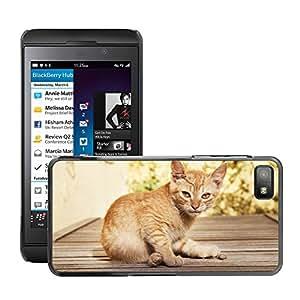 Hot Style Cell Phone PC Hard Case Cover // M00111364 Cat Sweet Kitten Cute Cat // BlackBerry Z10