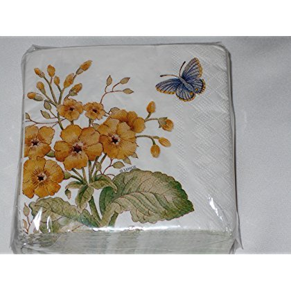 Lenox Fritillary Butterfly Meadow by CR Gibson Cocktail Beverage Napkins 40 Count