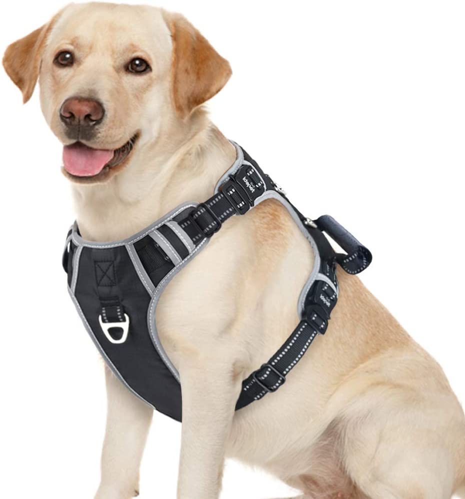 Amazon.com : Idepet Dog Harness, Dog Harness for Small Medium Large Dogs,  Adjustable Reflective Dog Vest Harness with 3 Metal D-Ring, Easy Control  Handle, L : Kitchen & DiningAmazon.com